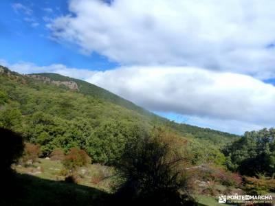 Castañar de El Tiemblo; ruta de los monasterios la rioja ruta los cuchillos del cabriel senderismo